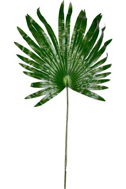 feuille de palmier soie d corations d coration th me fleurs le. Black Bedroom Furniture Sets. Home Design Ideas