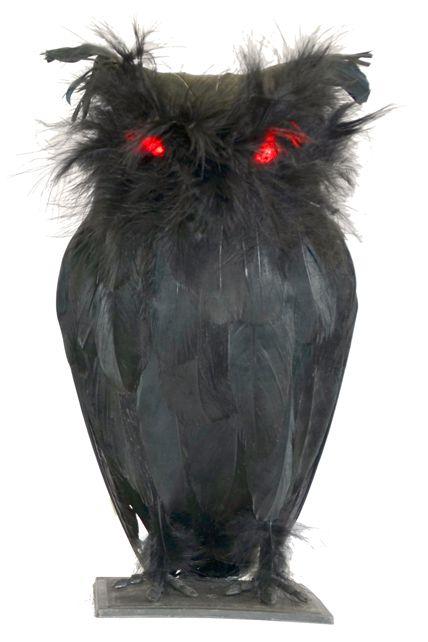 Chouette noire yeux lumineux d corations halloween le for Decoration yeux