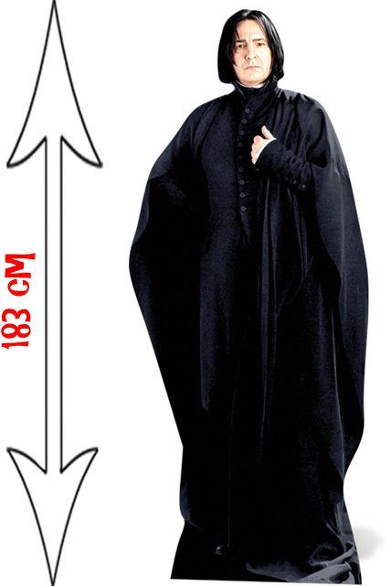 Figurine Severus Rogue Hermione Harry Potter D 233 Corations Les Figurines G 233 Antes Le Deguisement Com