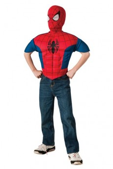 Kit Enfant Ultimate Spider Man costume