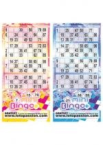 Mini Bingo Plus Série De 250 Tickets