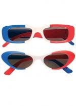 Lunette Tricolore France